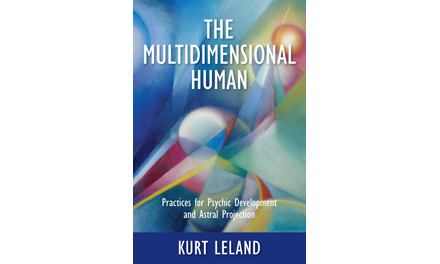 The Multidimensional Human: